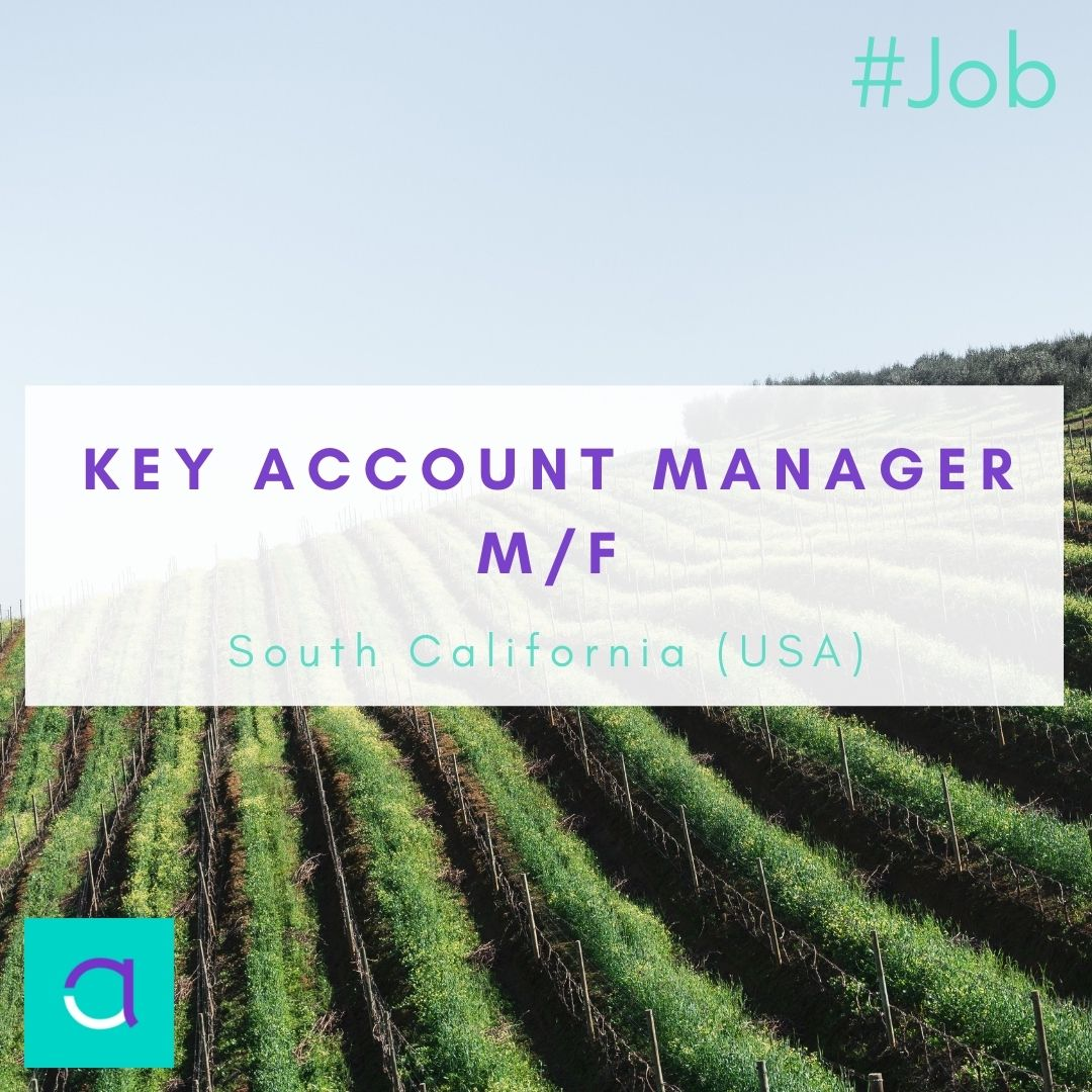Key Account Manager - Questel