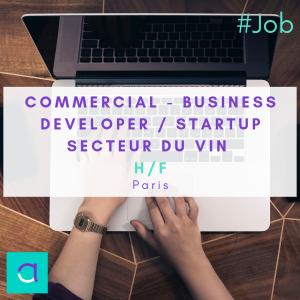 Commercial - Business Developer