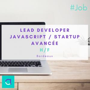 Lead Developer Javascript