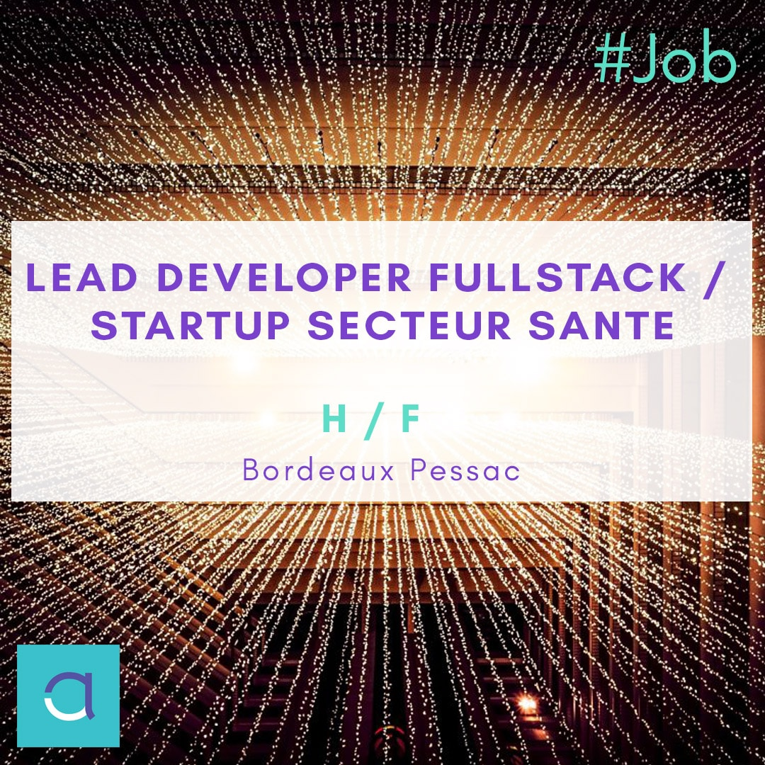 lead developer fullstack