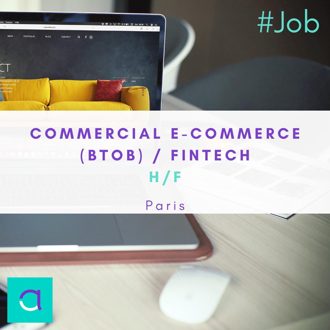 Commercial e-Commerce (BtoB)