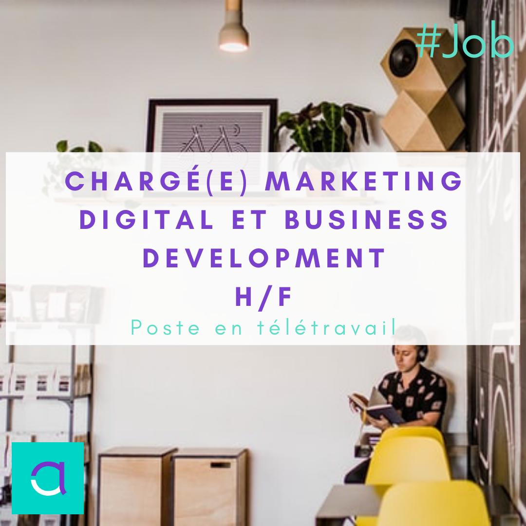 Marketing Digital et Business Development