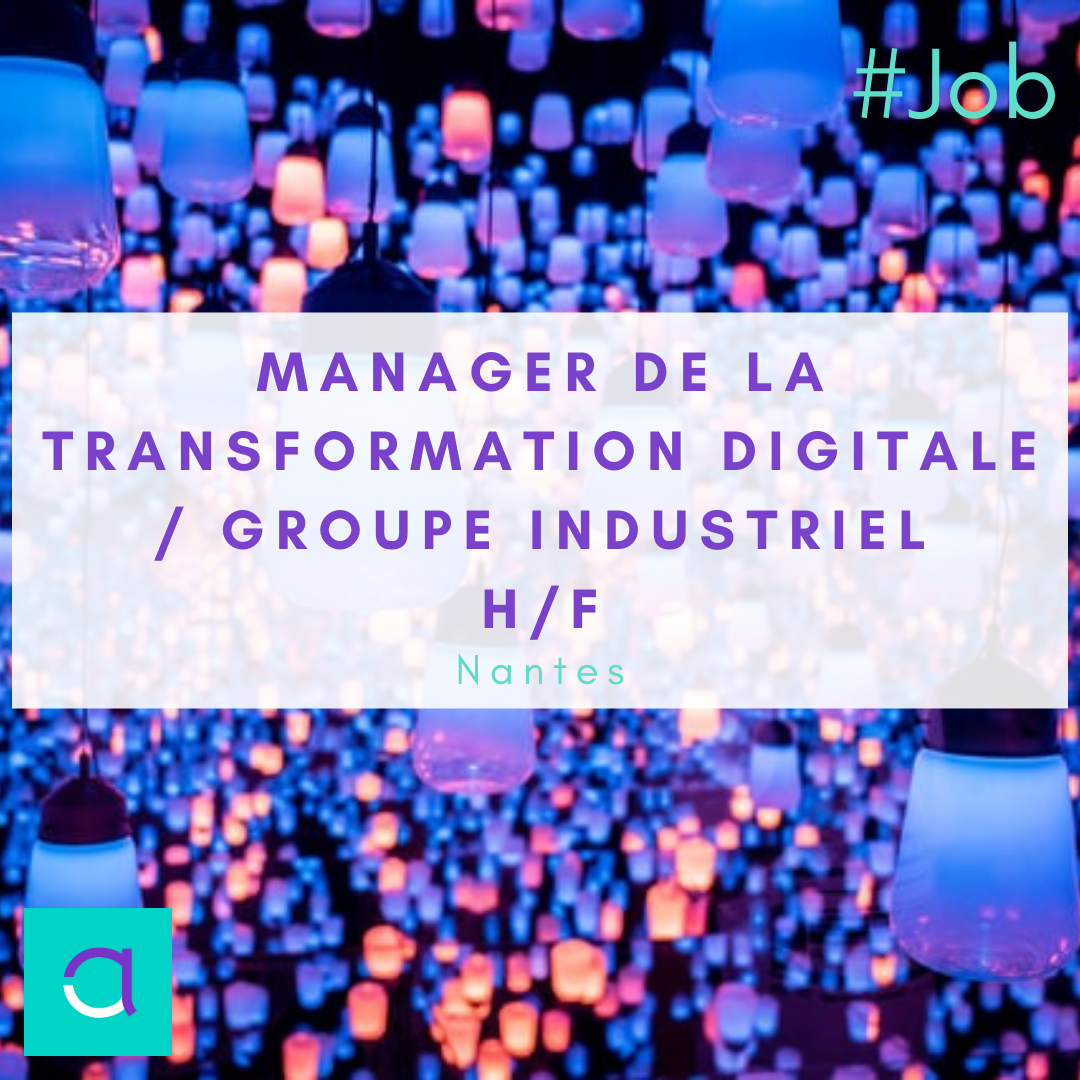 Manager de la Transformation Digitale