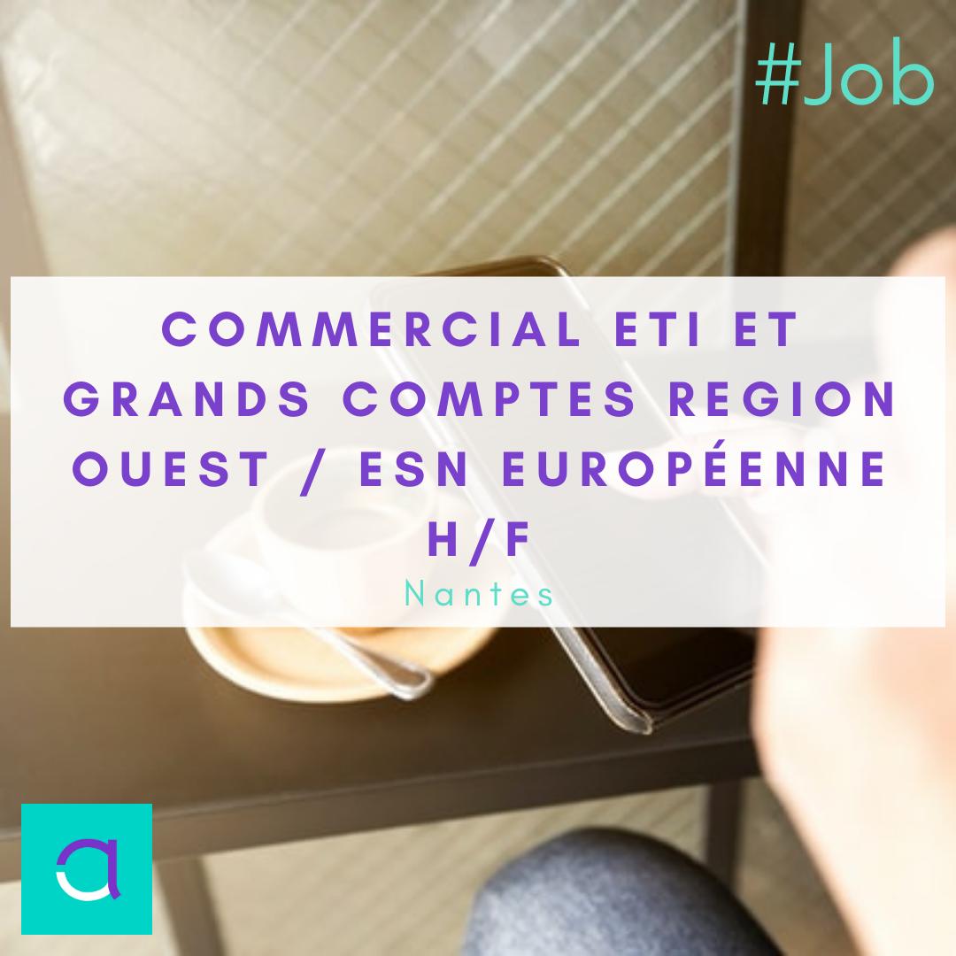 Commercial ETI et Grands Comptes