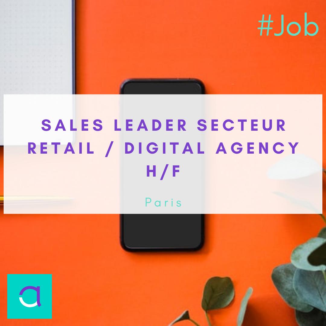 Sales Leader Secteur Retail