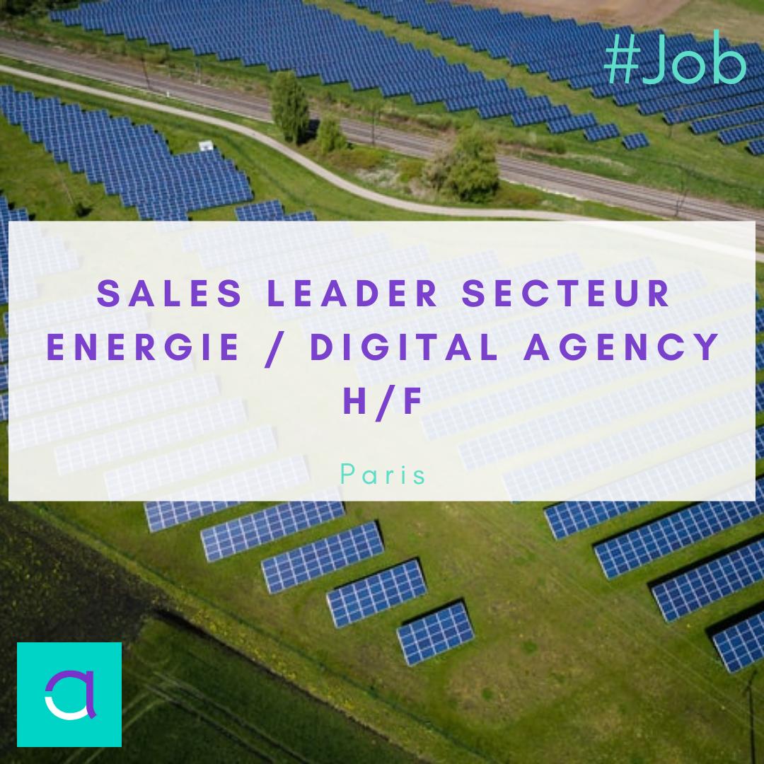 Sales Leader Secteur Energie