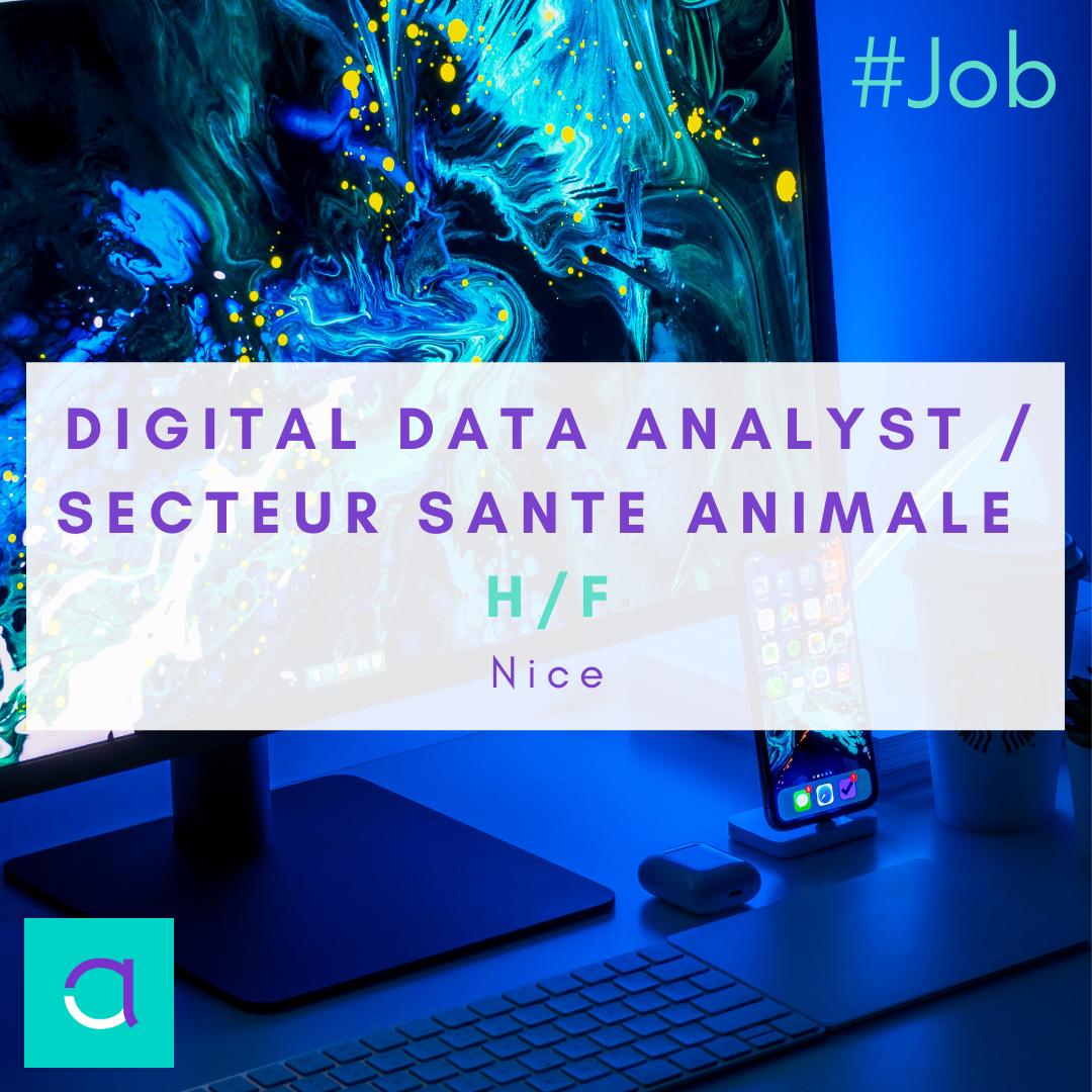 Digital Data Analyst