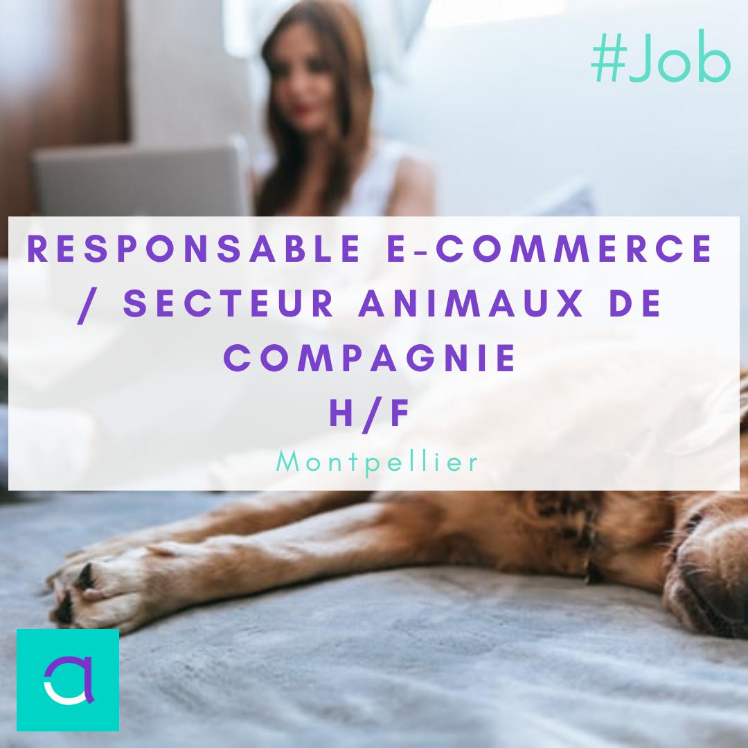 Responsable E-commerce