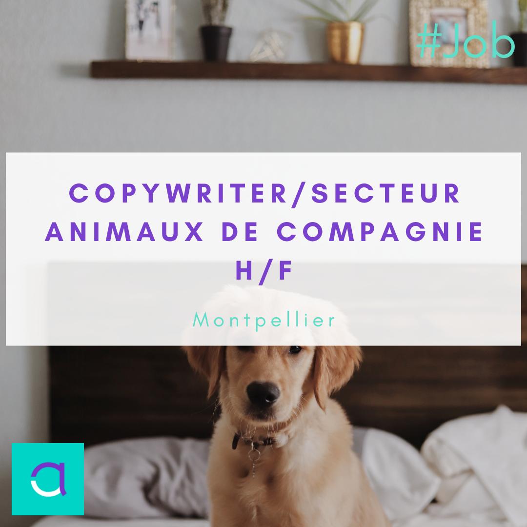 Copywriter / Secteur Animaux de compagnie (H/F)