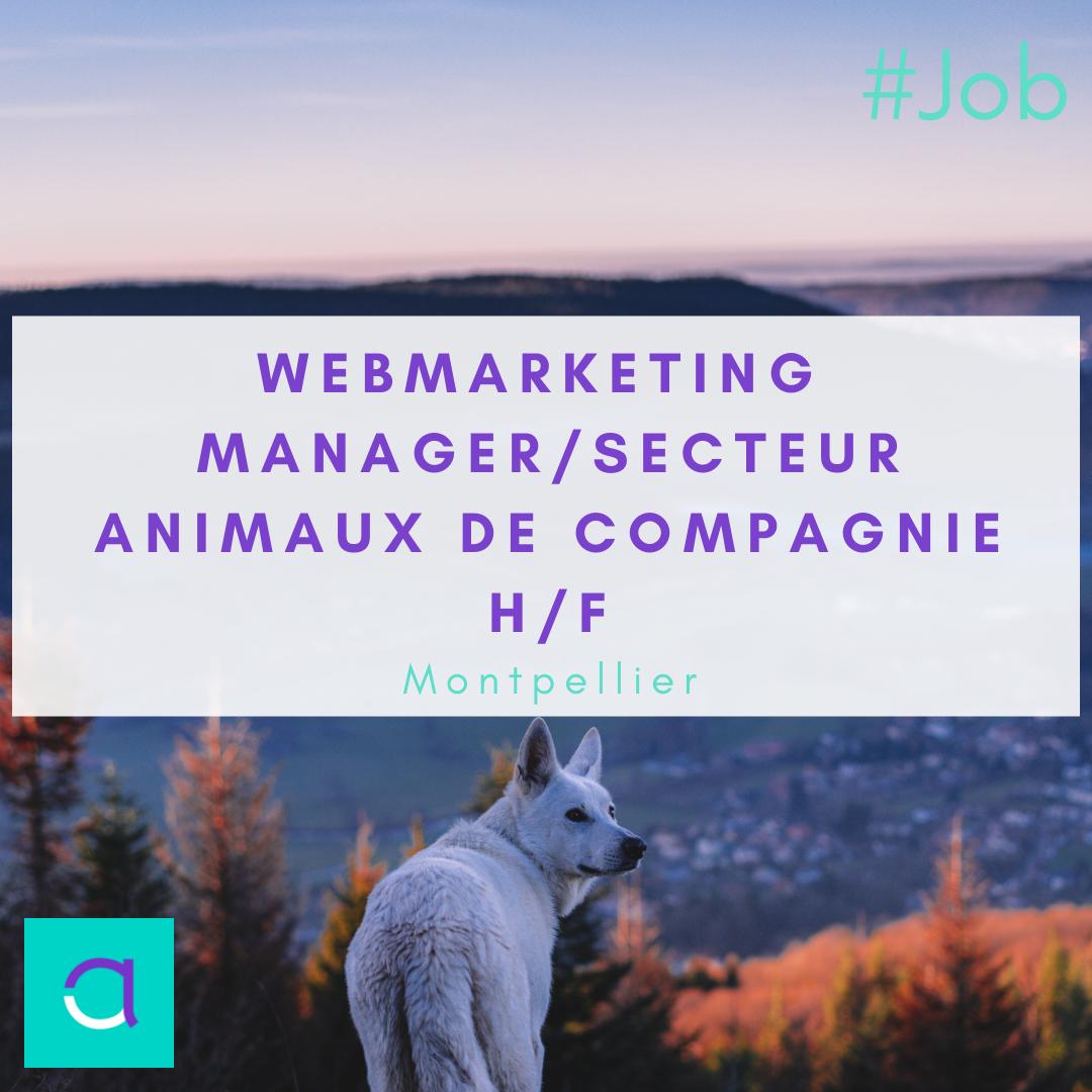 Webmarketing Manager / Secteur Animaux de Compagnie (H/F)