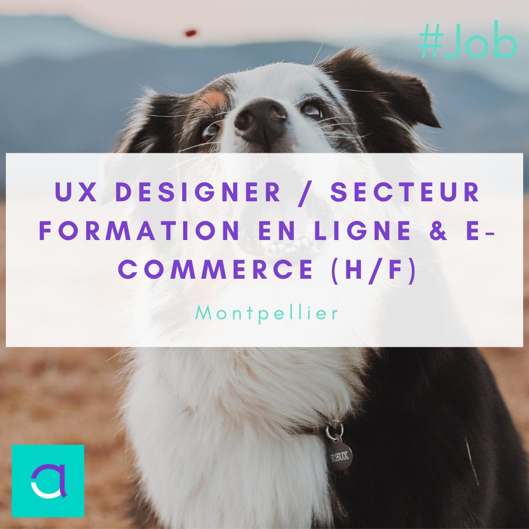 UX Designer / Secteur Formation en Ligne & e-Commerce