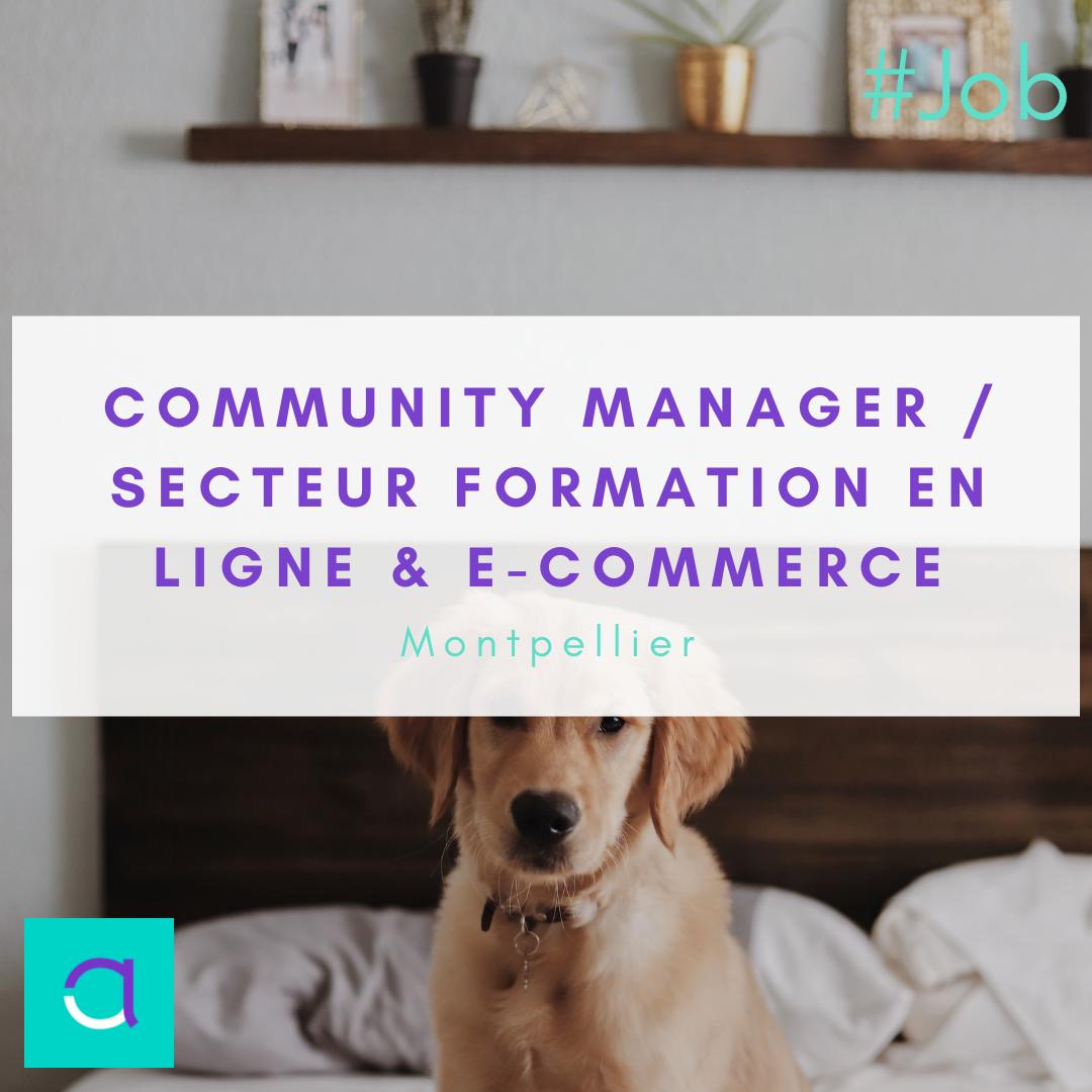 Community Manager / Secteur Formation en Ligne & e-Commerce