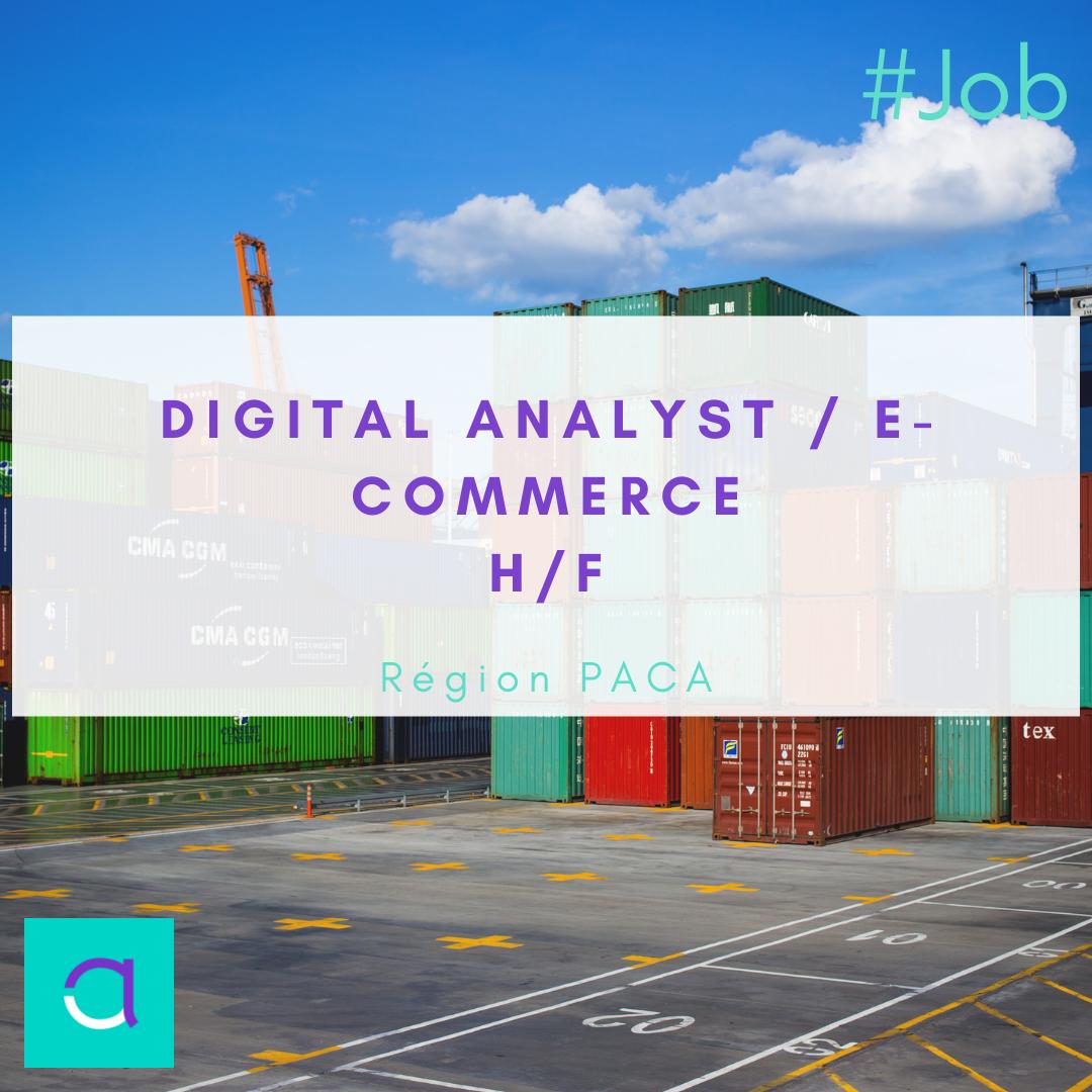 Digital Analyst / E-commerce