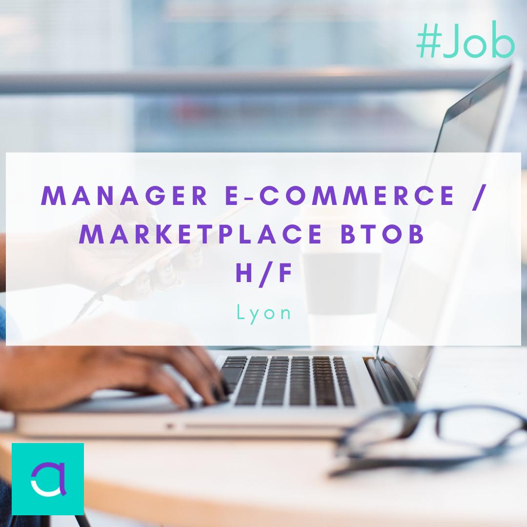 Manager e-commerce / Marketplace BtoB
