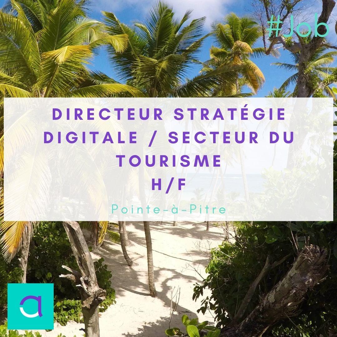 Directeur Stratégie Digitale / Secteur du Tourisme