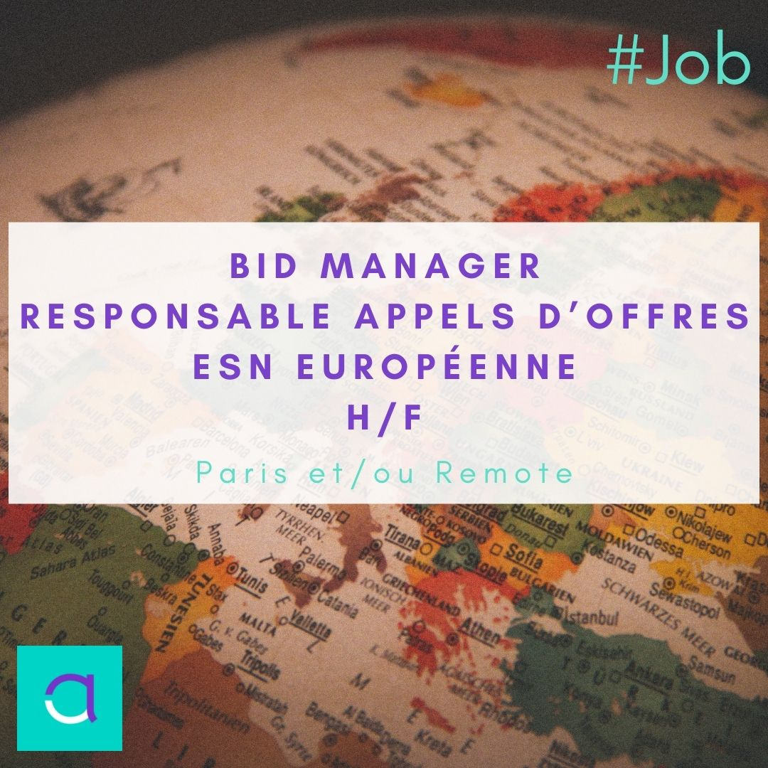 Offre d'emploi Bid Manager ESN Européenne